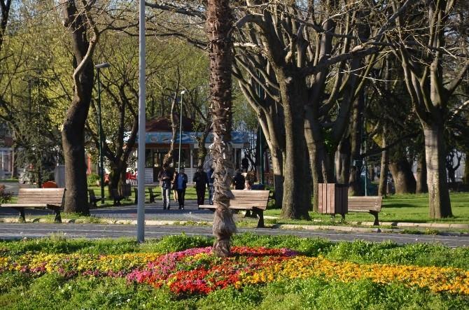 Bursa Baharı Çiçeklerle Karşıladı