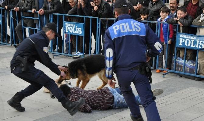Polis Köpeklerinin Gösterisi Nefes Kesti
