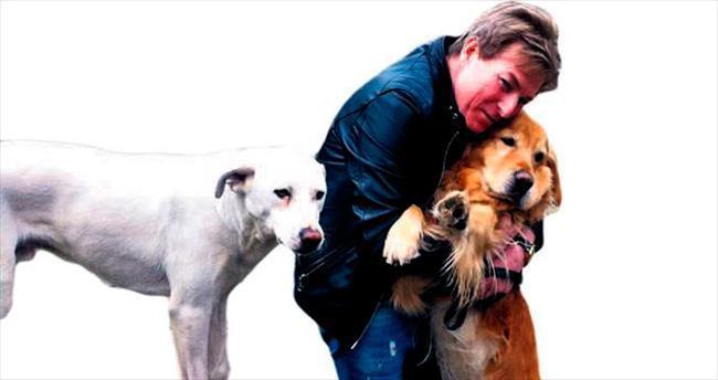 Hayvansever mimara 'köpek besleme' saldırısı