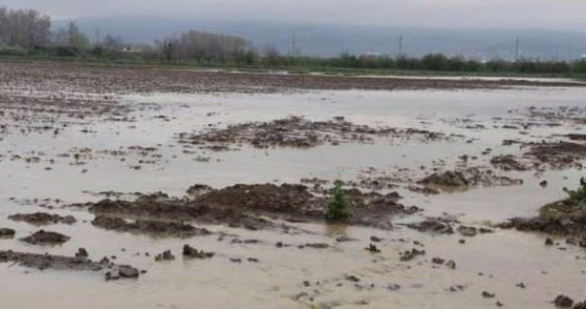 Tarım arazilerini su bast!