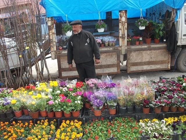 Pazarlar Çiçek Açtı