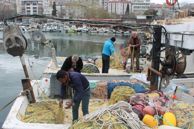 Marmara Denizi'nde Balık Çıkmayınca Sezon Erken Kapandı