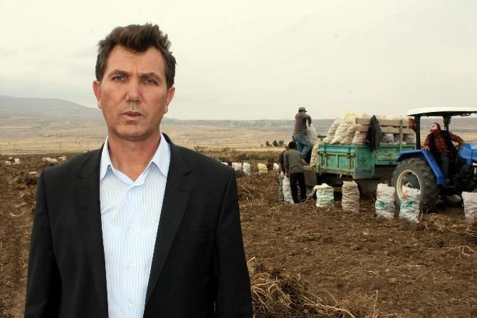 Altunhisar'da Patates Tohumlama Nisan Ayında Başlıyor