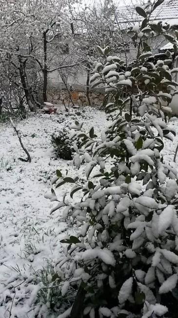 Taraklı'da Kar Kalınlığı 10 Santimetreyi Buldu