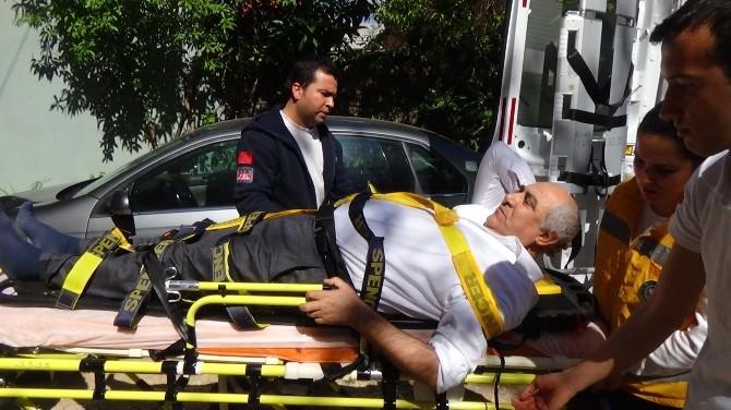 (Özel Haber) Kuşlara Yem Atmak İsteyen AK Parti İlçe Başkanı Hastanelik Oldu