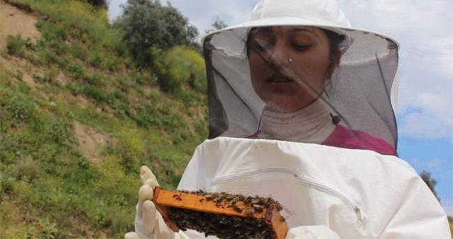 Kraliçe arı üretiminin kraliçesi oldu