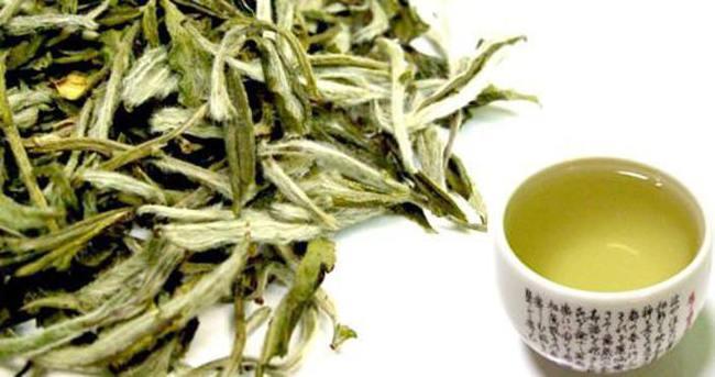 Beyaz çayla kanserden korunun