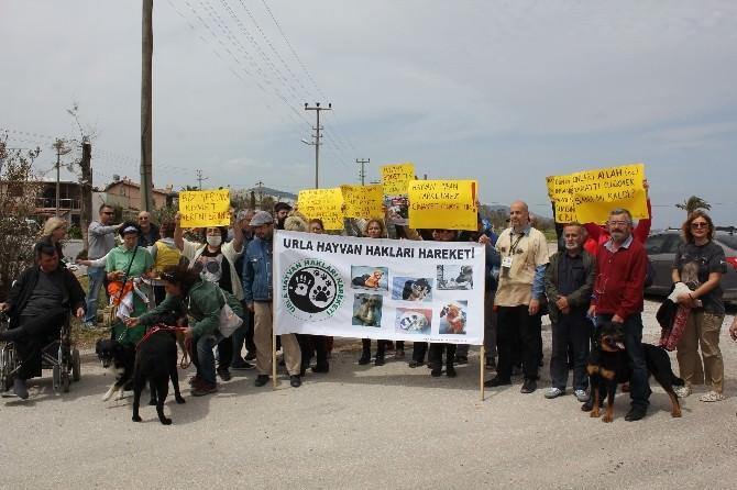Urla'da Hayvan Katliamı Protesto Edildi