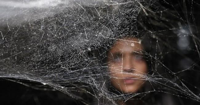Örümcek ağı sanatla buluştu