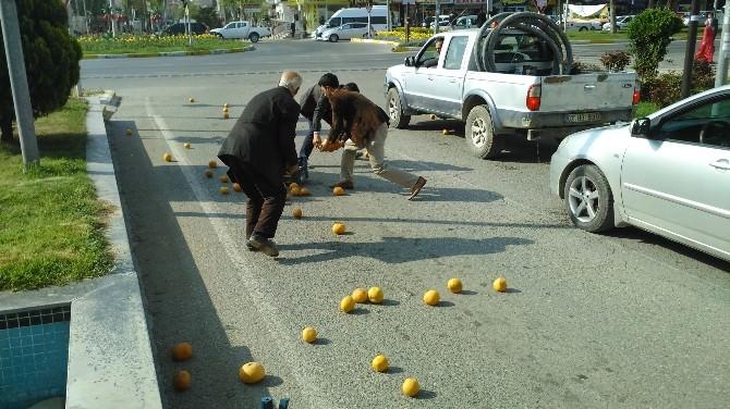 Yola Dökülen Greyfurtlar, Sürücüler Tarafından Toplanıp Sahibine Verildi