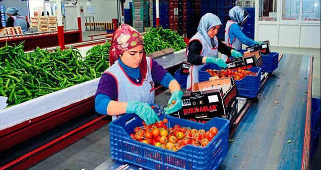 Örtüaltı tarımda açık lider Antalya