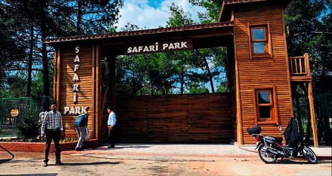 Safari Parkı yarın açılıyor