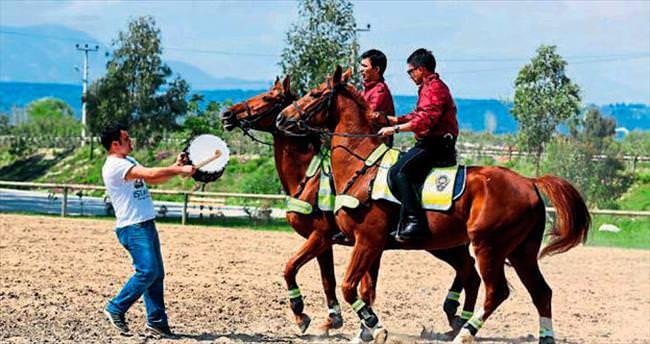 Polis atlarına davullu eğitim