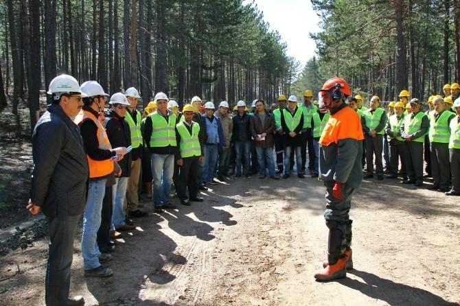 Orman Bölge Müdürlüğü Üretim Tatbikatlarına Başladı