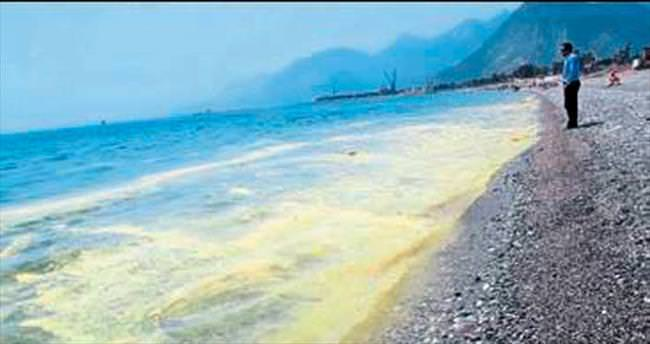 Denizdeki kirlilik için endişe etmeyin