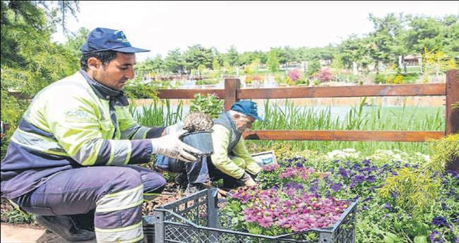 Dülük Parkı'nda 25 bin bitki dikildi