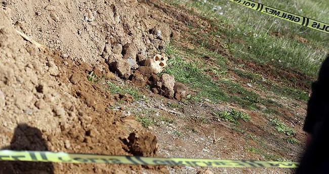 Kocaeli'de insan kafatası ve kemikleri bulundu