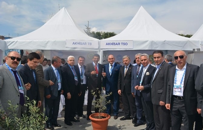 Akhisar Zeytini Ankara'da Büyük İlgi Gördü