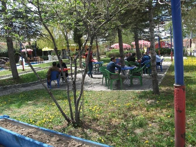 Seyitgazi Belediyesi Çay Bahçesi Yaza Hazır