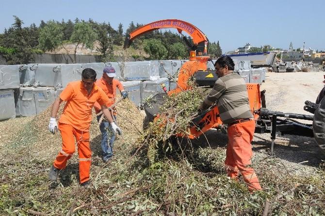 Yenişehir'de Budanan Dallar Geri Dönüşüme Kazandırılıyor