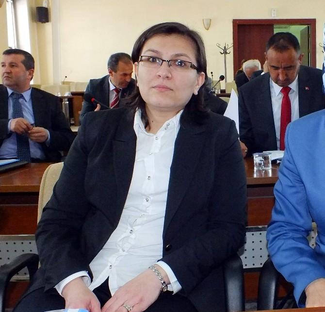 Aynur Koçuk Mercan, Birliğin İlk Bayan Encümen Üyesi