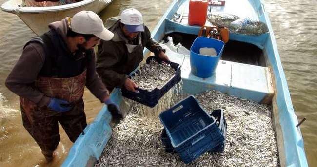Yozgat'tan Avrupa'ya balık ihracatı!
