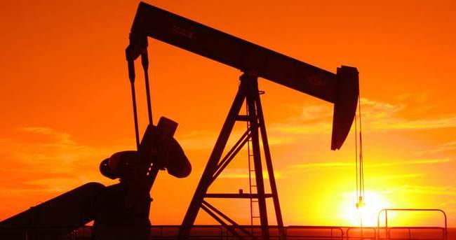 OPEC'e göre petrol fiyatlarında bizi ne bekliyor?