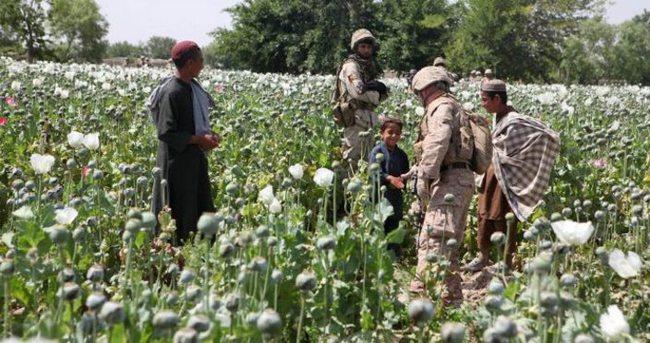 Afganistan'da uyuşturucu bağımlılarının sayısı 3 milyona ulaştı