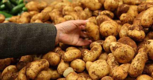 Rekabet Kurumu patatesi incelemeye aldı
