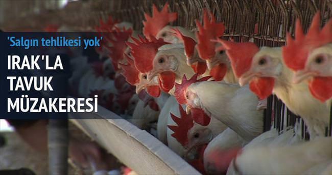 Irak'la tavuk müzakeresi