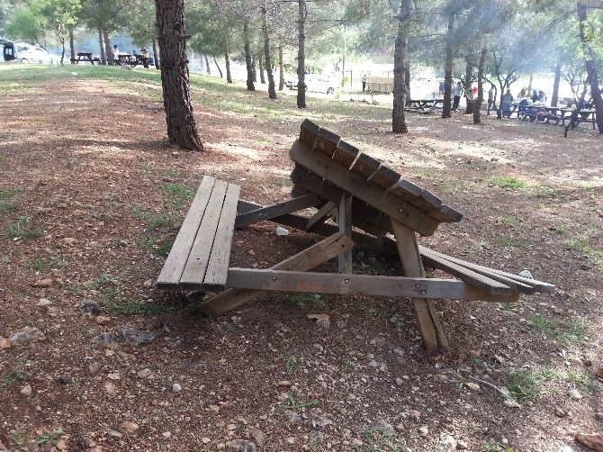 Ali Dağı Mesire Alanında Piknik Masaları Kırıldı