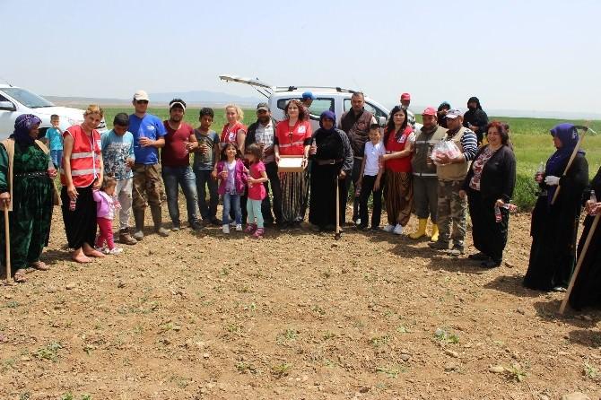 Eskişehir Kızılay Şubesi'nin Çiftçiler Günü Kutlaması