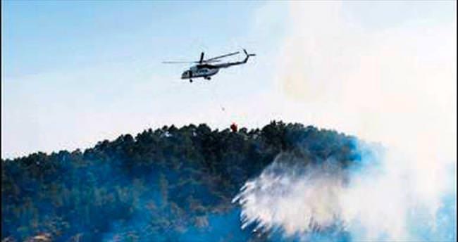 Sezonun ilk orman yangını söndürüldü