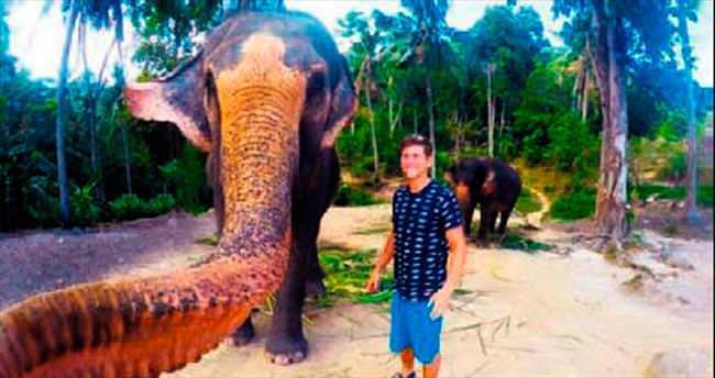 Selfie modasına fil de katıldı