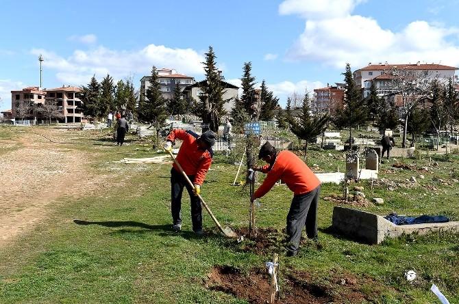 Mezarlıklarda, Temizlik Ve Bakım Çalışmaları Devam Ediyor