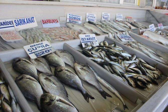 Av Yasağının Ardından Balık Satışları Azaldı