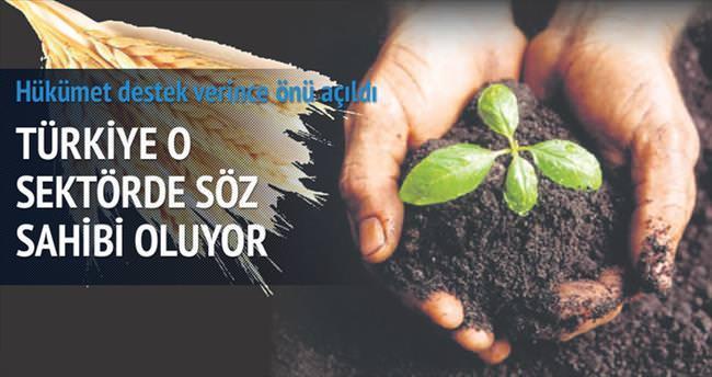 Türkiye tohum ihracatçısı oldu