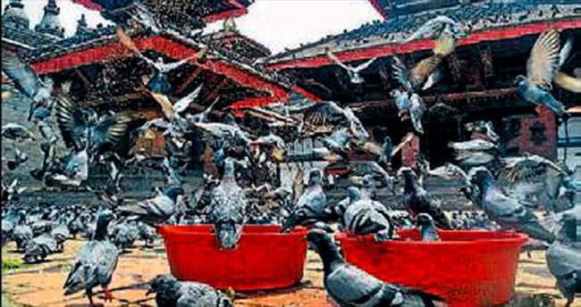 Hindistan Katmandu'yu keşfedin