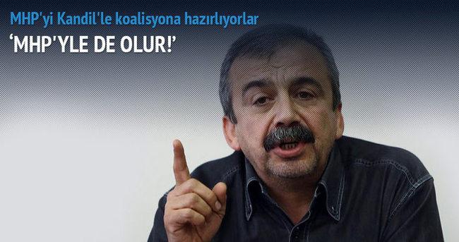 Sırrı Süreyya Önder: MHP'yle bile yürürüz