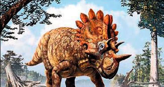 Yeni dinozor türü: Regaliceratops