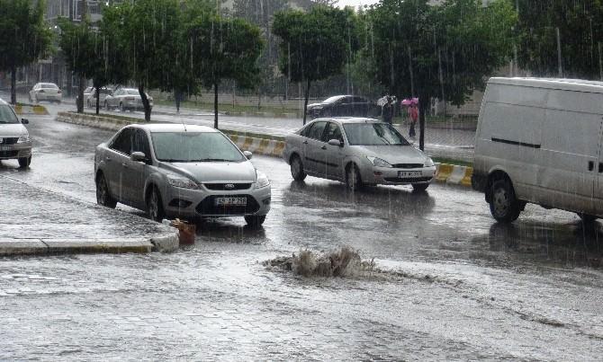 Muş'ta Etkili Yağış