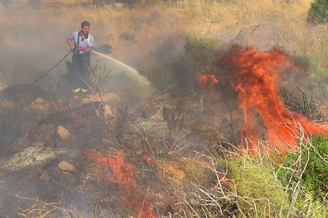 Bodrum'da Örtü Yangını Zeytinlere Sıçramadan Söndürüldü