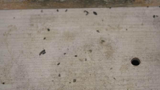 Salihli'de Zabıtadan Fırınlara Gece Baskını