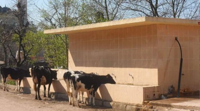 Kocaeli Köylerine Su Depoları Yapılıyor