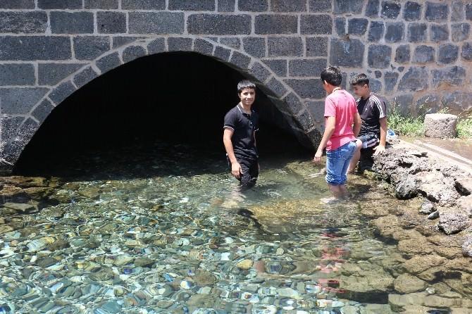 Sıcaklardan Bulanan Çocuklar Süs Havuzlarını Doldurdu