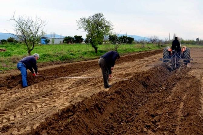 Akköy'de Ek Dağıtımda 24 Ailenin Tapuları Hazır