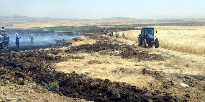Bin 500 Dönüm Ekili Buğday Tarlası Kül Oldu