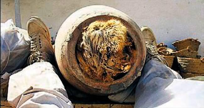Tapınakta 8 milyon köpek mumyası çıktı