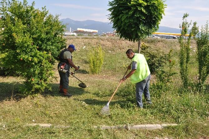 Akçay Ve Cemil Temel Mahallesi'nde Çalışmalar Sürüyor