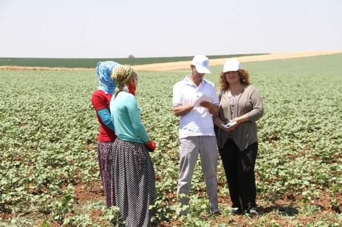 Kadın Ve Eşitlik Komisyonu Üyeleri Mevsimlik İşçileri Ziyaret Etti